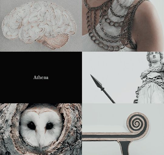 Greek Gods and their Roman counterparts | Athena & Minerva 1/2