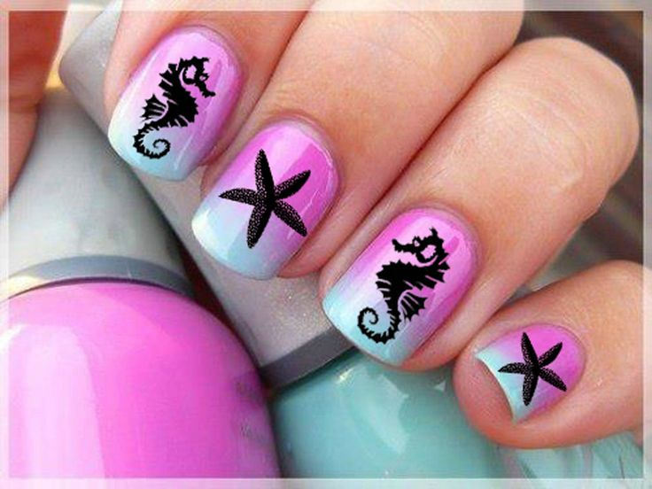 61 Starfish and Seahorse Nail Art Tropical Professional Results Decals
