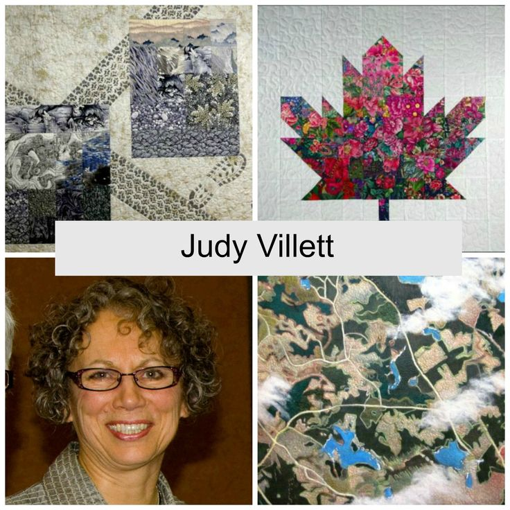 Judy Villett's current work combines many techniques, beginning with commercial or hand dyed fabrics that may be stenciled, painted, embellished, pieced, appliquéd and then finally machine quilted. H…