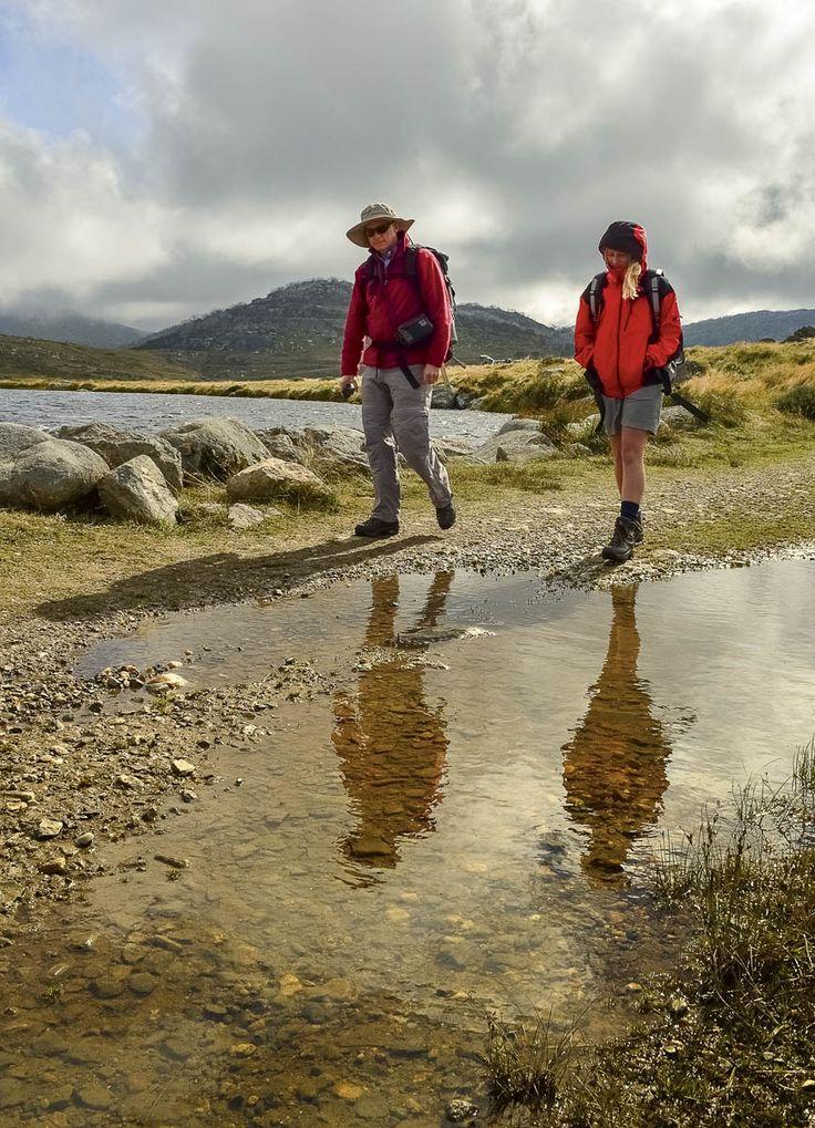 RoyalAuto, September, 2016. One step at a time. Photo: Anne Morley. #bushwalking #walk #walking #hiking