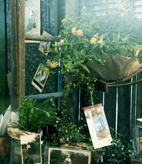 A stunning display of plants, flowers, and vintage photos at the More & More booth.   - CountryLiving.com
