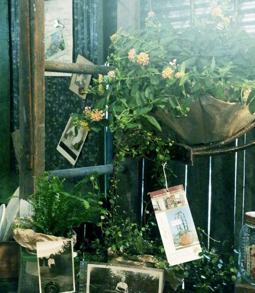fair country country fairs country living fair 17 garden garden nest