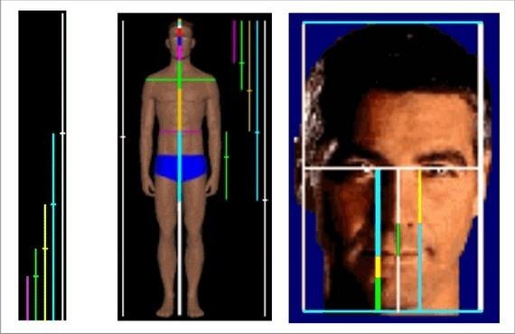 İnsan vücudunun başından yere kadar olan yüksekliğinin göbekten yere kadar olan oranda da bu sayılara rastlanır. Kalçadan ye kadar olan mesafenin, dizden yere kadar olan mesafesinde de bu oranı yakalamak mümkündür.