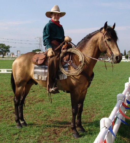 Frans Burger - with his Work Horse  Boer pony