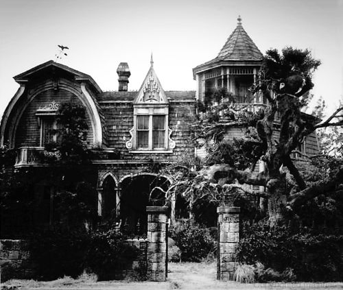 'The Munsters' Star Butch Patrick Plans To Open Up A Haunted Bed And Breakfast (Video) | Paranormal