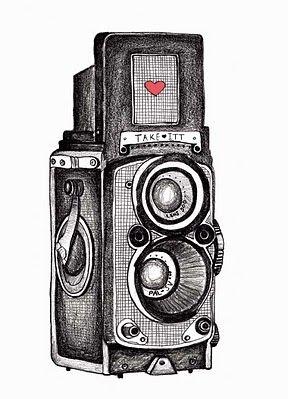 a beautiful camera