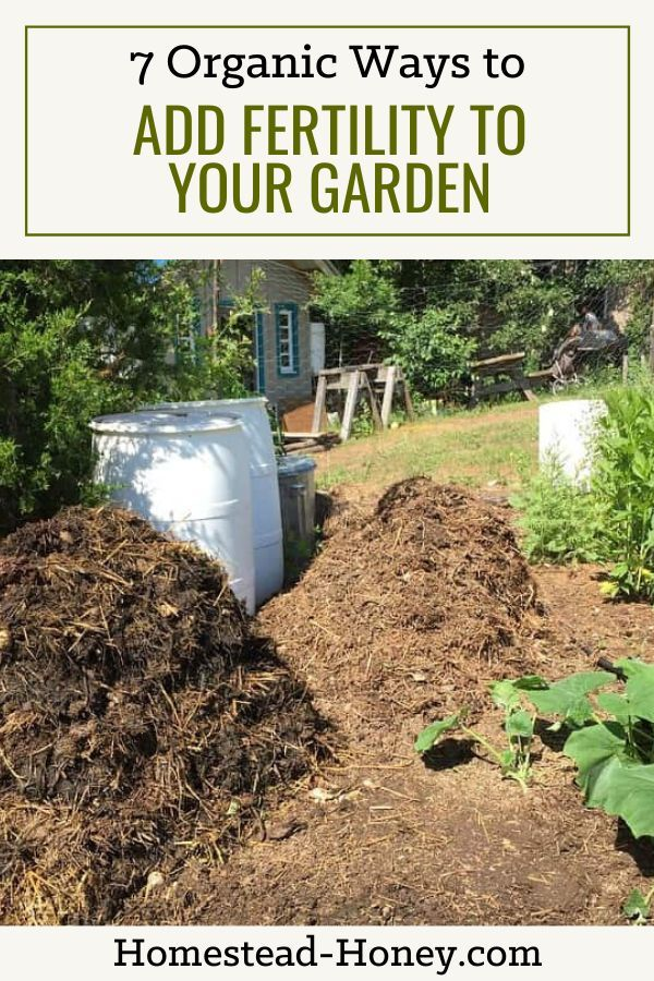 7 Organic Ways To Add Fertility To Your Garden Homestead Honey Compost Soil Garden Compost Organic Gardening