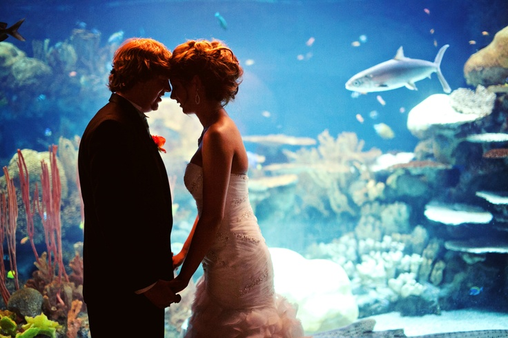 This is makes me want an underwater theme. photo by: Cindy  #minneapolisweddingphotographers