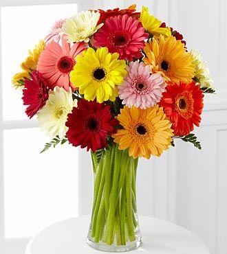 Colorful World Gerbera Daisy Bouquet --- isn't it so pretty