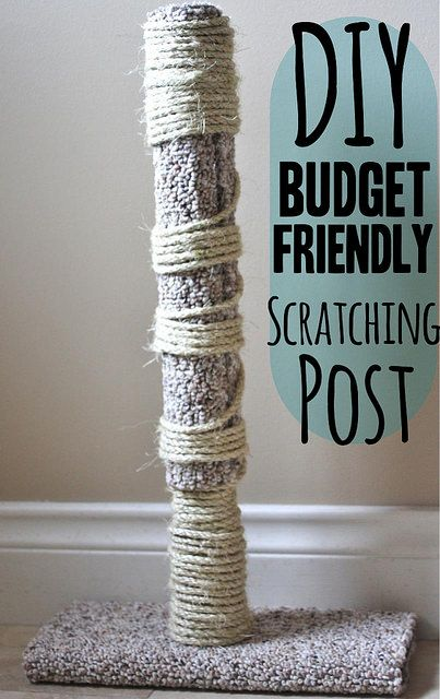 1000 ideas about scratching post on pinterest image cat for Homemade cat post