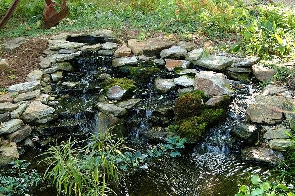 437 best images about small garden ponds on pinterest for Natural backyard pond