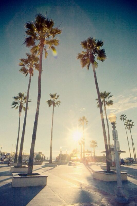 california beach iPhone wallpaper california ( proud to be a californian ) Pinterest ...