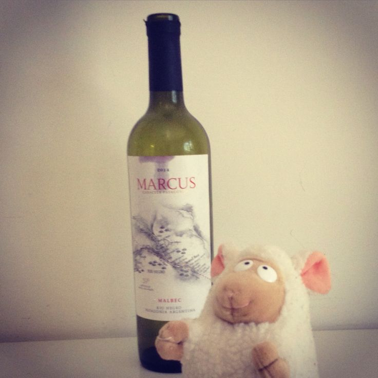 Ebrio Oveja has tasted for you Marcus, vino tinto Malbec from Rio Negro (Patagonia, Argentina), bottled by Humberto Canale (9/10). #winetasting #wine #redwine #argentina #argentinianwine #argentinian #argentinianfood #malbec #patagonia #patagonico #vino #vinotinto