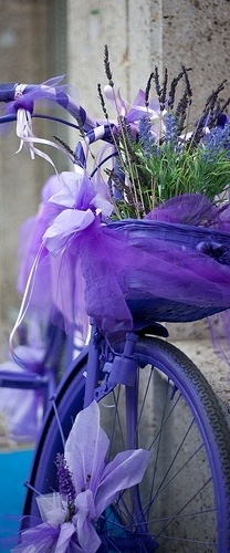 purple bicycle & flowers....   Purple is a happy color