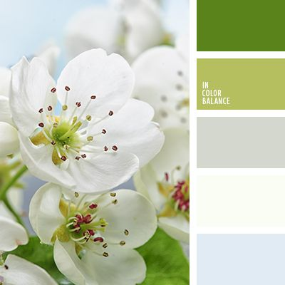 Juicy and fresh as spring grass palette. The deep green and pale lime become brighter and more expressive on the background of delicate pastel shades. Transparent gray tones are ideally suited to this combination. Inside, the interior of which is made in such a scheme, even to breathe will be free and easy. Suitable for decoration apartments, cafes, beauty salons. A wonderful color scheme for bed linen.