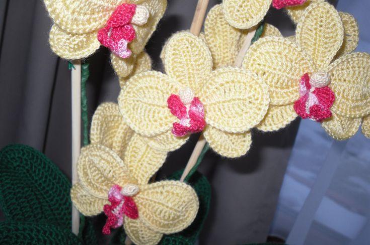 háčkovaná orchidea