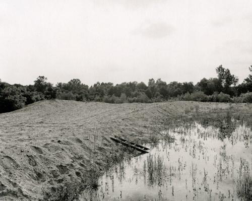John Gossage / The Pond