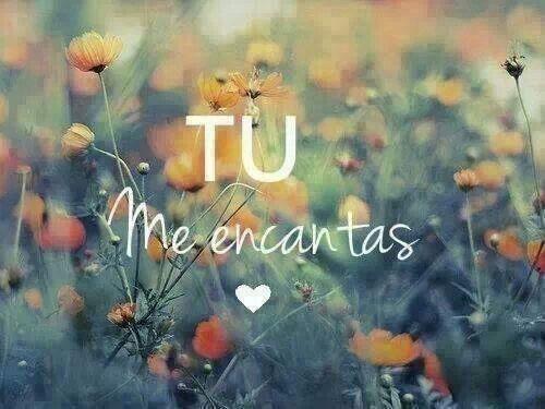 Me encantas *u*