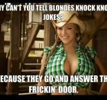 Why cant you tell blondes knock knock jokes - meme