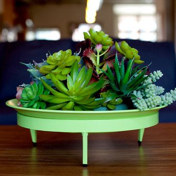 raw metal dish garden: Gardening Succulents, Diy Things, Mod Dish, Mod Planter, Dish 5X16, Steel Life, Planters
