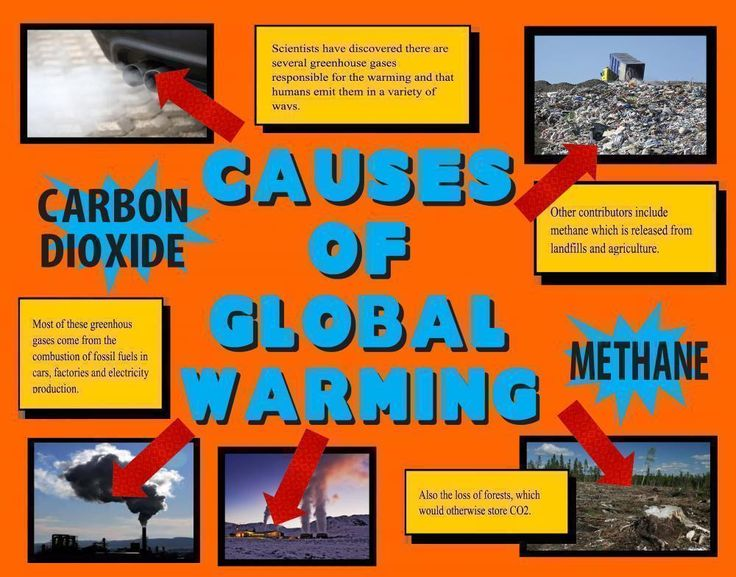 Make a Science Fair Project | Poster Ideas - Causes of Global Warming - Carbondioxide | Climate Science Project for Kids