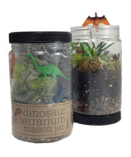 So this might be my favorite take on the current terrarium crazy. A DIY Dino Terrarium Jar. Awesome.