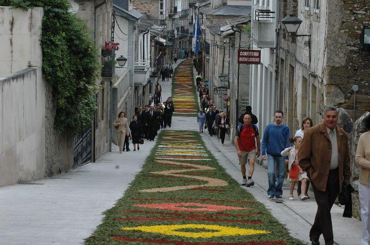 Alfombras florales el día del Corpus Christi, Sarria, Lugo, Camino de Santiago