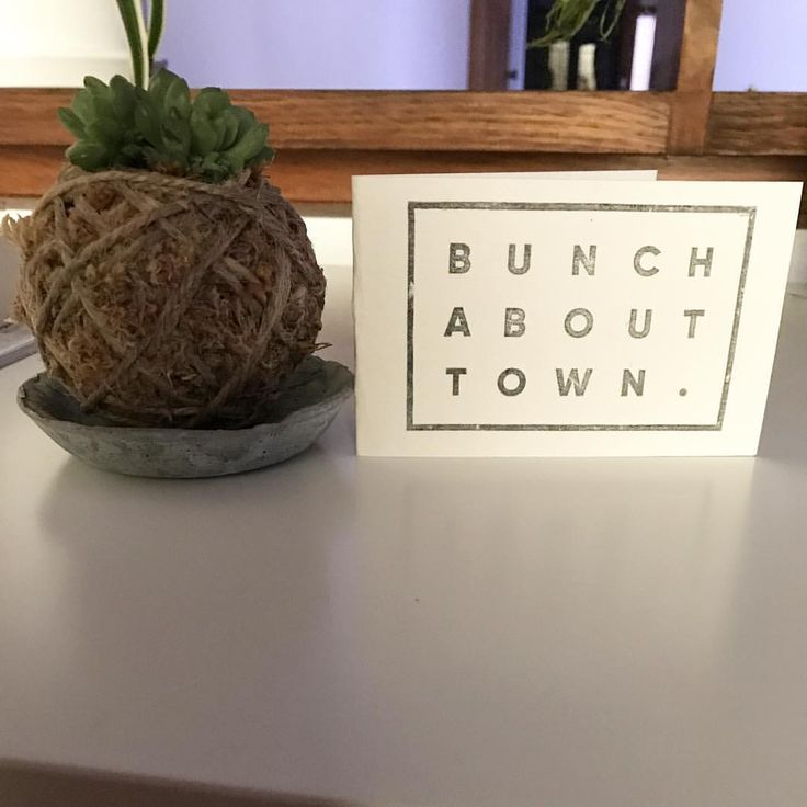 """17 Likes, 2 Comments - Nadia Ritchie (@nadiar12) on Instagram: """"I'll be damned if this baby kokedama doesn't make the cutest lil gift, thanks @bunchabouttown, your…"""""""