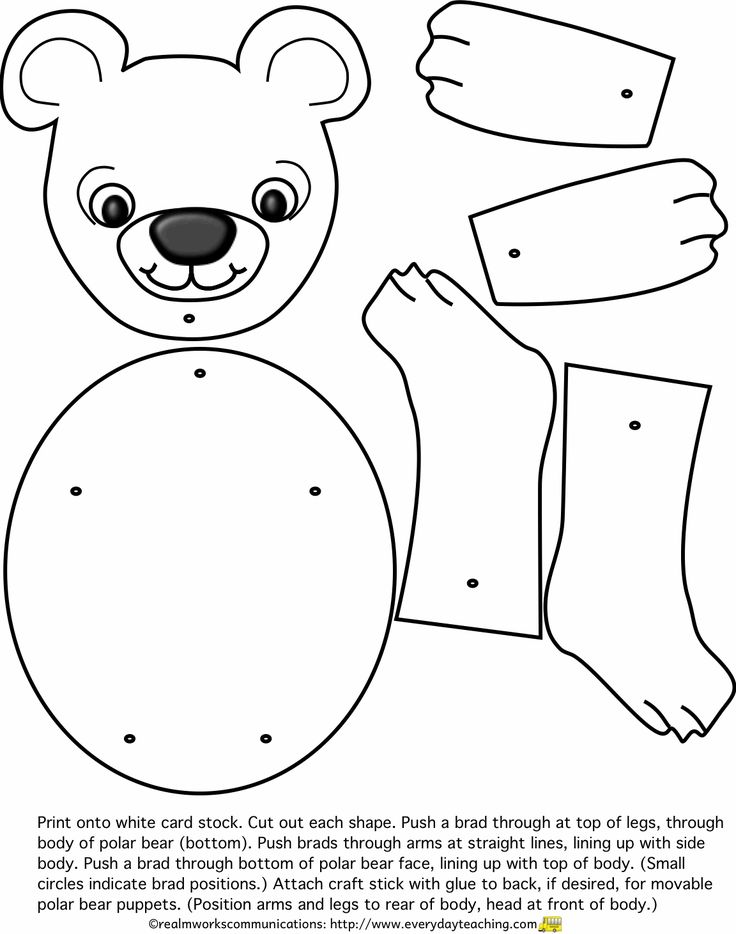 83 best lední medvědi images on Pinterest | Polar bear ...