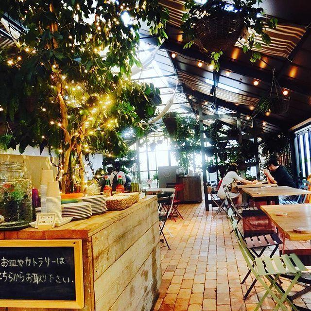 木✖️電飾の 組み合わせカワイイ♡  #farm#farmerskitchen #l4l#instapic#saturday#goodmorning#instagood#lunch#green#nature#camera#instagram#designdecafe#cafe#interior  #ランチ#カフェ#お洒落#カメラ#写真##風景#景色#ファーマーズキッチン