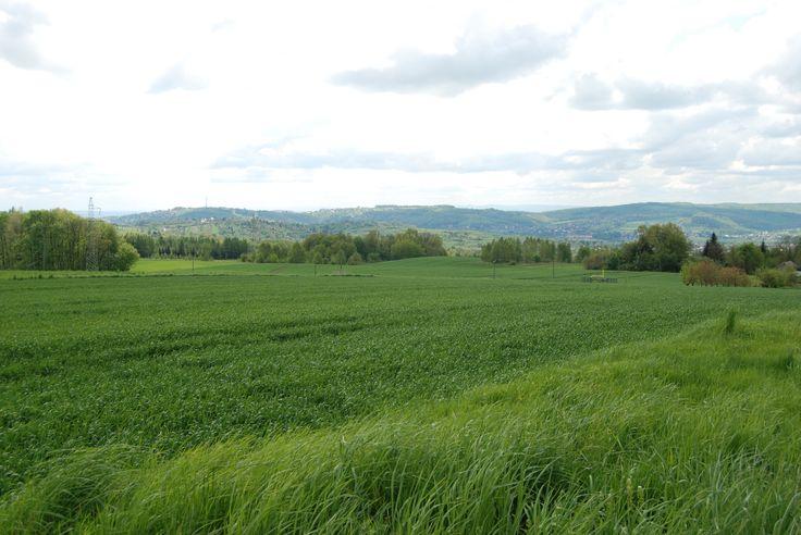 """Panorama Zniesienia, Baterii Kruhel i Wapielnicy. Widok z drogi nieopodal fortu nr VIIIa """"Aszczycówka"""""""