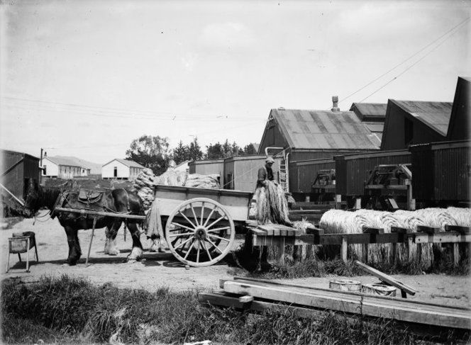 Miranui flaxmill  - Flaxmill at Miranui in Horowhenua, 1917, with a worker using a horse drawn cart to move fibre from the mill to the bleaching and drying paddocks. Photograph taken by George Leslie Adkin Miranui flaxmill. Adkin, George Leslie, 1888-1964 :Photographs of New Zealand geology, geography, and the Maori history of Horowhenua. Ref: 1/2-065681-G. Alexander Turnbull Library, Wellington, New Zealand. http://natlib.govt.nz/records/22759179