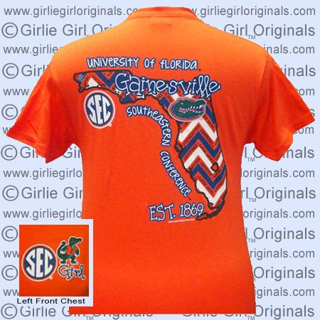 Florida T-Shirt: State Chevron (Short Sleeve)