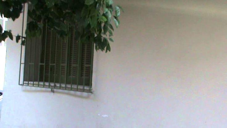 ανακαίνιση σπιτιού πεύκη