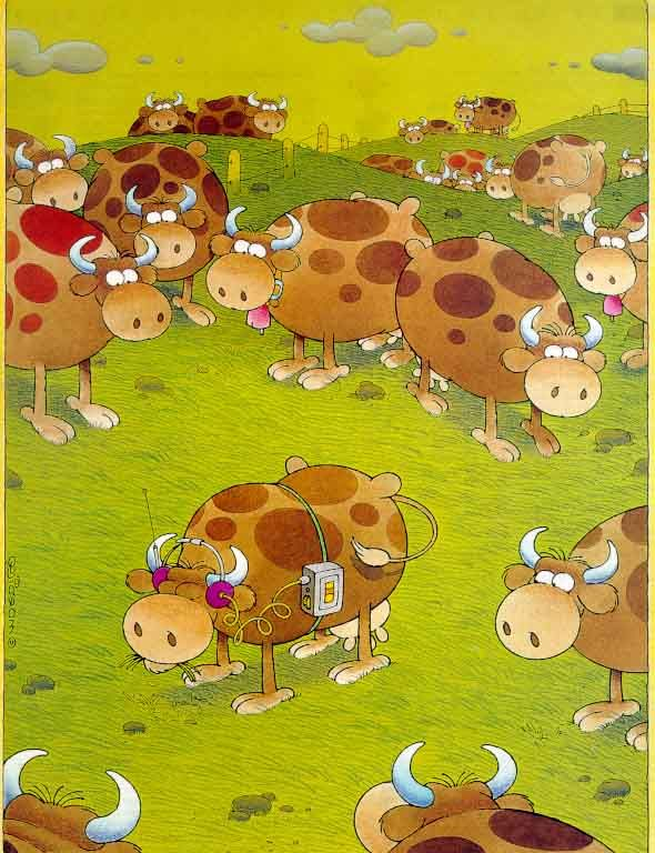 animals06.jpg (590×768)