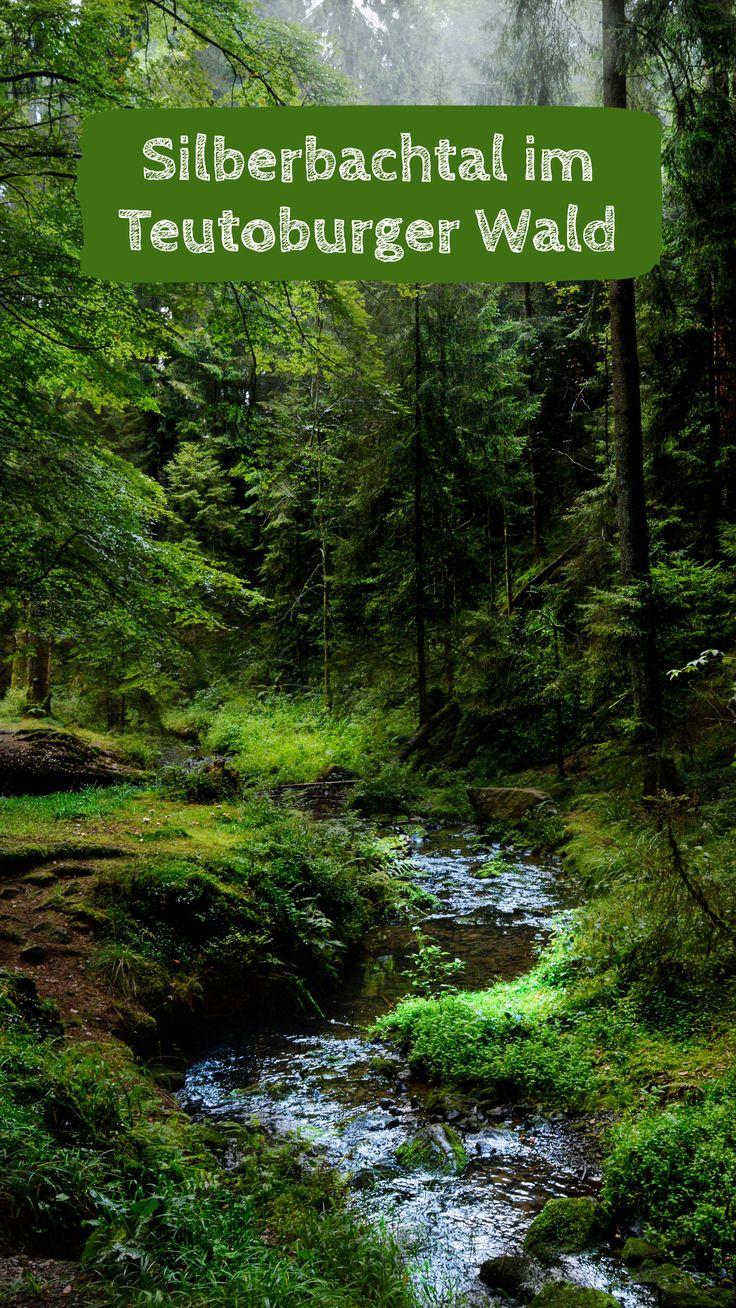 Welche Ausflugsziele gibt es im Teutoburger Wald? Ich habe meine drei Lieblingsf …   – Deutschland