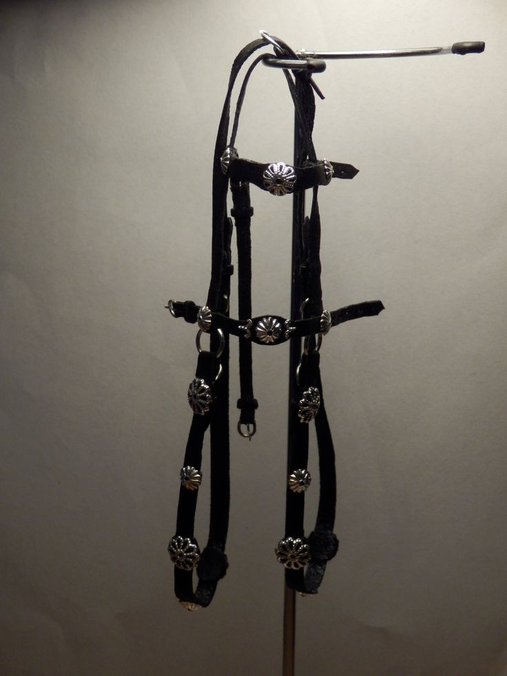 The bridle to the red renaissance saddle