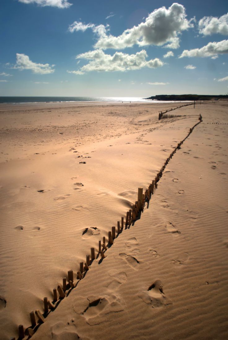 Take a stroll along the long stretches of golden sand at Sandhaven Beach, South Shields.