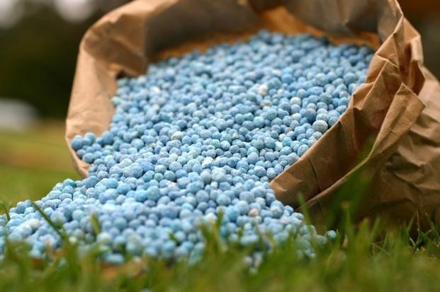 Przeterminowane nawozy i środki ochrony roślin należy utylizować