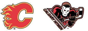 Image result for calgary flames logo