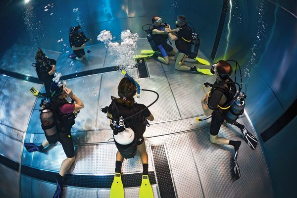 Ask an #Scuba Expert: Should Refresher Courses Be Mandatory for #Divers? #scubadiving What do you think? You should. Check if you're in Phoenix, come to us! http://scubaprofaz.com/scuba-diving-courses/scuba-skills-update-course/