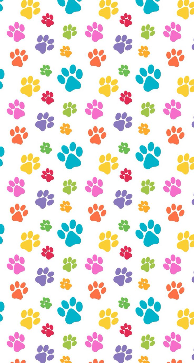 pets Paws print pattern colorful cute design wallpaper iphone cell phone background