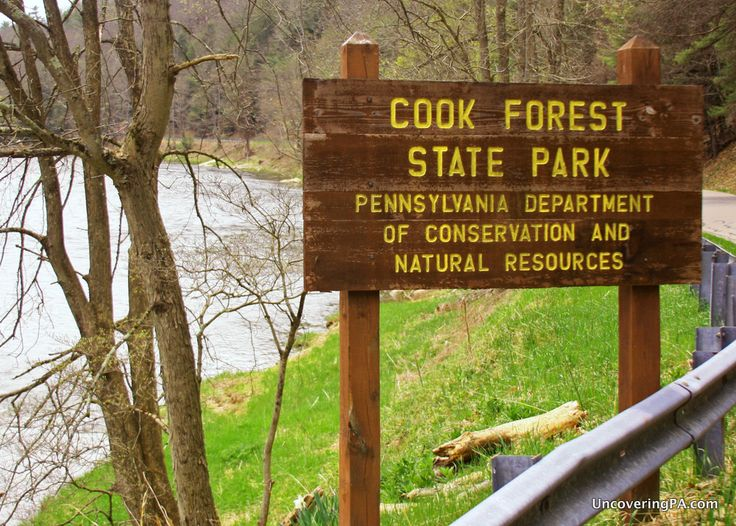 Been here and it is amazing. .... 5 Fantastic Reasons to Visit Cook Forest State Park