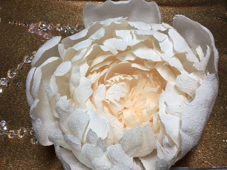 28 best Paper Flower Must Haves images on Pinterest ...