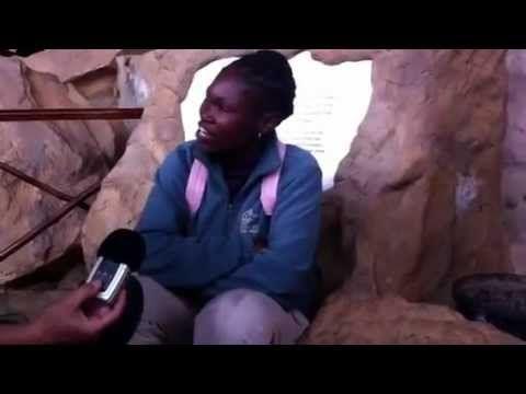 Zulu Language