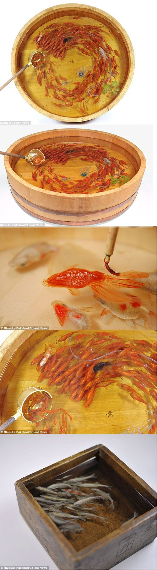 Riusuke Fukahori creates three-dimensional fish sculptures then paints the fish with multiple layers. http://www.dailymail.co.uk/news/article-2165477/Riusuke-Fukahori-fish-sculptures-Artist-creates-3D-models-painting-layer-layer-resin.html