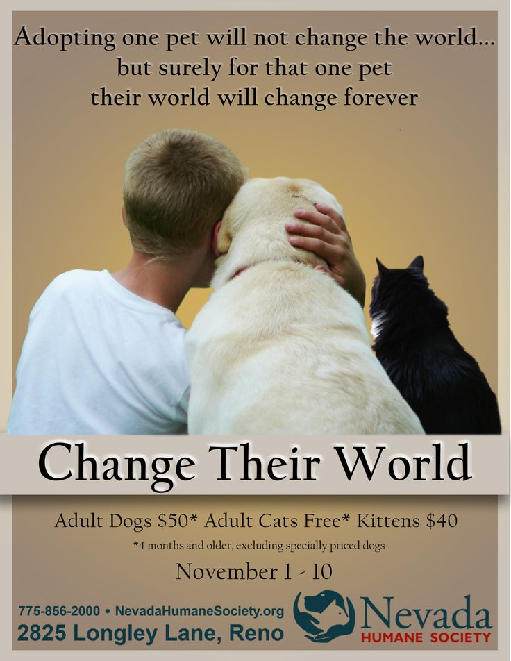 human society change If you participate in the humane heroes monthly giving program, please call us at 866-720-2676, or email donorcare@humanesocietyorg to change or update your account information what is the hsus's tax id number.