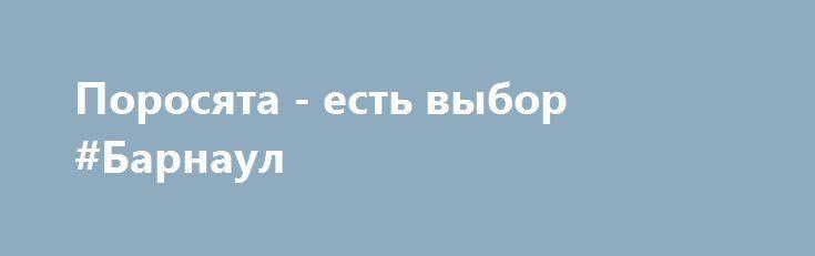 Поросята - есть выбор #Барнаул http://www.pogruzimvse.ru/doska22/?adv_id=1541 Поросята на вырост. Продаём поросяток порода Крупная Белая помесь с Ландрасом, возраст 30-40 дней. Кастрированные, хвосты купированные, клыки отколоты. Проколоты витамином и железом. В машине всегда есть выбор. Ведём предварительную запись. Привезём любое количество. Доставка до Вашего дома осуществляется бесплатно. {{AutoHashTags}}