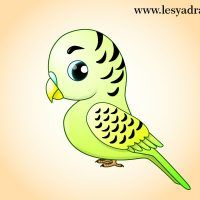 papagei-selber-malen-dekoking-com