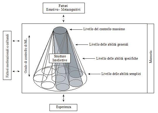 LA MEMORIA DI LAVORO - I modelli teorici, Il modello di Cornoldi e Vecchi (2003) - La memoria di lavoro visuo-spaziale (MLVS), La MLVS nel bambino - Aree cerebrali coinvolte nella memoria di lavoro